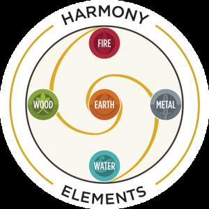 Natural System è il metodo unico di Coaching